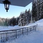 зима в пампорово хотел камелия