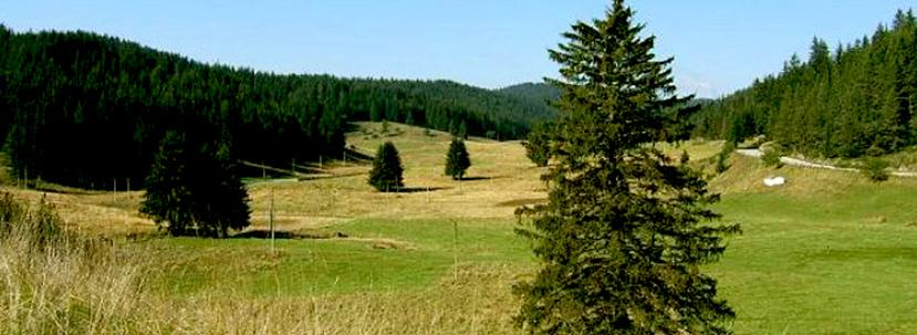пешеходен преход до роженските поляни Родопите